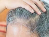 'ही' आहेत केस पांढरे होण्याची कारणं; ऑलिव्ह ऑईल ठरतं परिणामकारक!