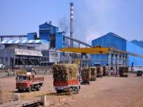 केंद्र सरकारकडून साखर उद्योगाला 4500 कोटींच पॅकेज जाहीर