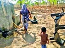 शेतकरी कुटूंबाची भूतदया;माकडांच्या कळपास दररोज पाजतात पाणी