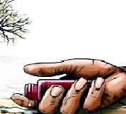 बीड जिल्ह्यात आत्महत्याग्रस्त शेतकरी कुटुंबांसाठी उभारीचे प्रयत्न कासवगतीने