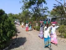 सातारा : मायणी अभयारण्यात बहरणार कडुनिंब, पिंपळ अन् गुलमोहर,वनविभागाचा उपक्रम : एक लाख दहा हजार वृक्षलागवडीचा संकल्प