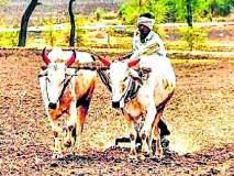 शेतकऱ्यांना अतिरिक्त व्याजाच्या डागण्या