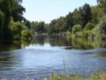 वाघ नदीत बुडून युवकाचा मृत्यू, कुटुंबावर शोककळा