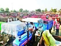 शेतकरी चिंतित : येवला बाजार समितीत २० हजार क्विंटल आवक कांदा ११०० रु पयांनी घसरला