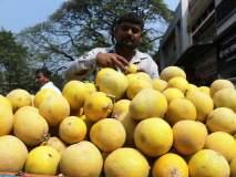 कोल्हापूर : रताळे, वरी, शाबूदाण्याला मागणी, महाशिवरात्रीमुळे बाजारात गर्दी : भाज्यांचे दर स्थिर
