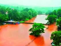 रत्नागिरीत मुसळधार पाऊस; रघुवीर घाटात दरड कोसळली