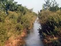 परभणी : दीडशे दलघमी पाणी पळविले