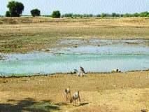 गोदावरी काठावरील गावांना पाणीटंचाईच्या झळा