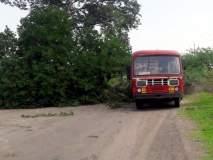 परभणी : पाथरीजवळ वाऱ्याने कोसळले झाड