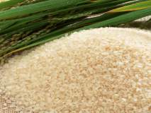 दिल्लीतील मेळाव्यात गडचिरोलीचा तांदूळ दाखल