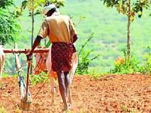 १८ हजार शेतकऱ्यांना पीक कर्जाचे वाटप
