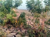 परभणी:येलदरी धरणाचे दगड ढासळू लागले