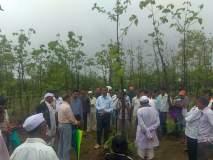 उत्कृष्ट वनसंवर्धनात तीन गावांची बाजी