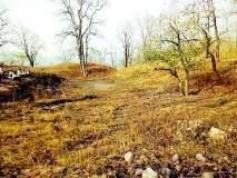 शशीकरण पहाडीजवळ वनतलाव होणार काय?