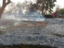 गडचिरोलीत नक्षलवाद्यांनी जाळला लाकूड डेपो; दीड कोटींच्या नुकसानाचा अंदाज