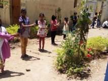 उन्हाळ्याच्या सुटीत शाळेत तयार केली रोपवाटिका