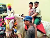 रत्नागिरी : विद्यार्थ्यांनी लुटला घोडेस्वारीचा आनंद,चिपळुणातील सती-चिंचघरी प्राथमिक शाळा