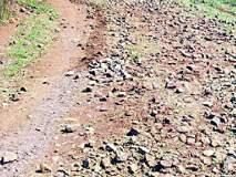 रस्त्याअभावी पहाडावरील कोलाम आदिवासींचे हाल