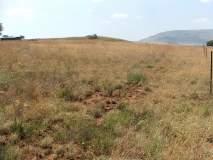 सालारजंग व खरेदी-विक्री संघात जमिनीचा वाद; मालमत्तेला ठोकले कुलूप