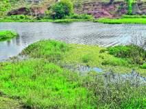आंबी येथे इंद्रायणी नदीमध्ये वाढले प्रदूषण : प्रशासनाचे दुर्लक्ष