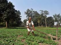 शेतकºयांना स्वावलंबी बनवण्यासाठी सोलापुरात किसान कार्यशाळा