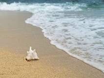 समुद्र किनाऱ्यांची सफर करायची आहे?; 'हे' आहेत बंगळुरूमधील बेस्ट ऑप्शन!