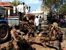 Anna Hazare Andolan : राळेगणसिद्धीतील ग्रामस्थ करणार सामूहिक आत्मदहन