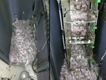 उंदरांचा सर्जिकल स्ट्राईक; 12 लाखांच्या नोटा कुरतडल्या