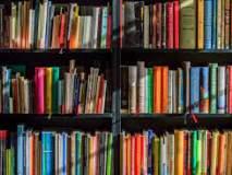 तुमच्या घरातल्या पुस्तकांच्या लायब्ररीची कशी काळजी घ्याल?