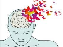 माणसाचं मन मेंदूतच दडलंय!