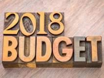 budget 2018 : अर्थसंकल्पाकडून विविध क्षेत्रांच्या अपेक्षा...