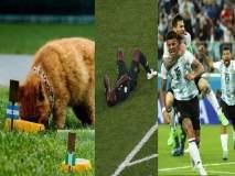 FIFA Football World Cup 2018 : ... अन् तिच्या मृत्यूने फुटबॉल प्रेमी हळहळले