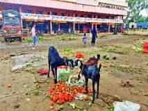 चाकण बाजारात भाज्या मातीमोल; पावसामुळे शेपू व कोथिंबिरीचे भाव गडगडले