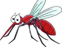 डेंग्यू नियंत्रणासाठी उपाययोजनामहापालिका : दमट हवामानामुळे डेंग्यूचा प्रभाव वाढण्याची शक्यता