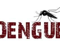 डेंग्यूरुग्णांमध्ये अमरावती अव्वल! पश्चिम व-हाडातील स्थिती भयावह