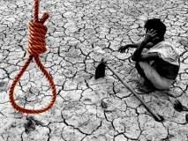 राज्यात दररोज 7 शेतकऱ्यांच्या आत्महत्या; 6 महिन्यांत 1307 शेतकऱ्यांनी संपवलं जीवन