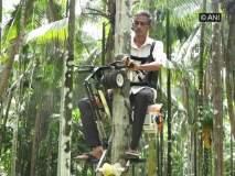 Video: रस्त्यावर नाही तर झाडावर चढणारी अनोखी बाईक; काही सेकंदात गाठणार झाडाचं टोक