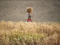 ह्रदयद्रावक! शेतकरी महिलेनं स्वत:च रचलं सरण, त्यातच पत्करलं मरण