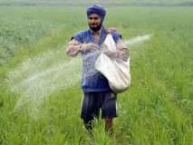 खतांचे अनुदान थेट शेतकऱ्यांच्या खात्यात?