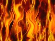 गडचिरोलीत नक्षलवाद्यांनी जाळला लाकूड डेपो