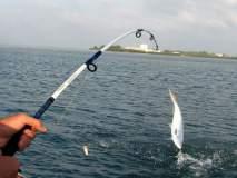 फॉर्मलिन माशांबाबतच्या भूमिकेवरून गोवा सरकारवर चौफेर टीका