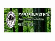 भारतीय वन सर्वेक्षण अहवाल : दंडकारण्य नव्हे; ओसाड नाशिक!