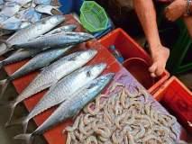 Formalin scare : माशांची आयात थांबविण्याच्या मागणीला पुन्हा जोर