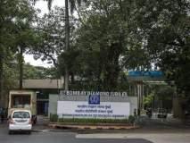 आयआयटी मुंबईच्या प्लेसमेंटमध्ये ३६१ कंपन्यांकडून तब्बल १,१२२ ऑफर्स