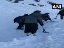 लडाखमध्ये हिमस्खलनामुळे तिघांचा मृत्यू; 7 जणांचा शोध सुरू