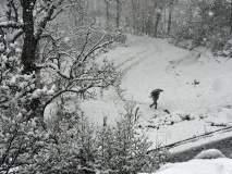 श्रीनगरमध्ये मोसमातील पहिली बर्फवृष्टी, रस्त्यांवर मखमली चादर!