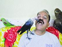 पक्षिप्रेमीचा शेकडो पक्ष्यांना आधार