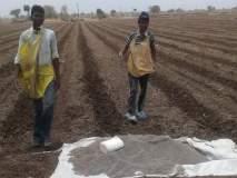 रासायनिक खतांच्या टंचाईने शेतकरी त्रस्त