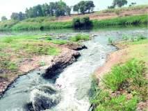 सांगलीच्या दूषित पाण्याचा शिरोळ तालुक्याला फटका, पंचगंगेपाठोपाठ कृष्णा नदीही प्रदूषित : भाजीपाल्यांवरील कीटकनाशके, औषधांमुळेही आरोग्य धोक्यात