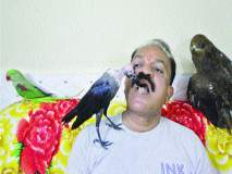 पक्षी दिन विशेष : पक्षिप्रेमीचा शेकडो पक्ष्यांना आधार